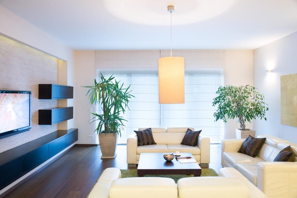 The Perfect Plants for Staging Your Home to Sell