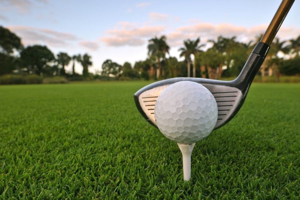 Tee Time in Naples, the Golfer's Paradise